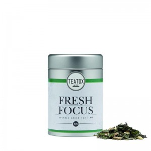 teatox-fresh-focus-green-tea-ginkgo-biologisch
